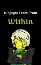 Ninjago: Tears From Within  by Cute-Nutella-Jar