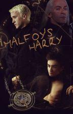 Malfoy's Harry. • Drarry by Ma1ibu