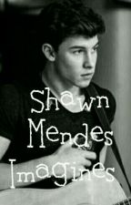 Shawn Mendes Imagines by dolxn_edits