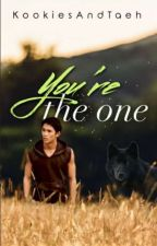 Your the one(Seth Clearwater x reader) by CielPhantomhiveLove1