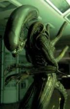 """Story over. all plot elements will be moved to """"The Friend in a Xenomorph"""" by JShear54"""