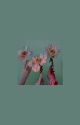 Bóng hoa trong gương → Minrose