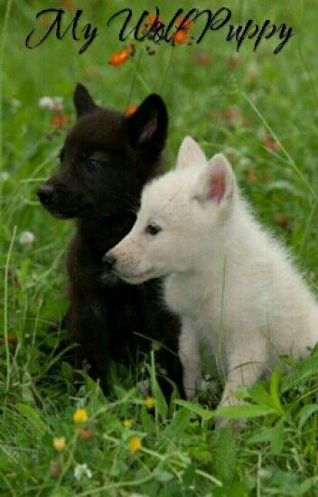 My Wolf Puppy