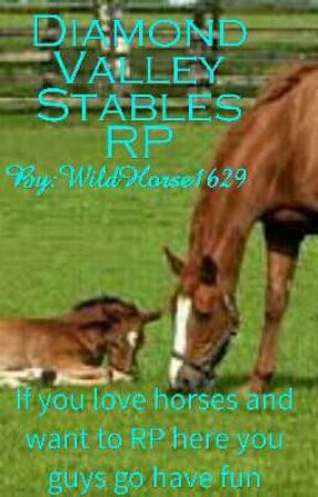 Diamond valley Stables Rp by WildHorse1629