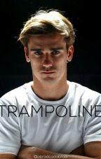 Trampoline - AG by abradcadabrad