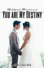 You Are My Destiny by annisakiara