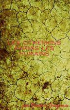 Les otherkins parmi  les humains by Xionmir