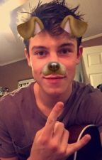 Shawn Mendes Song Lyrics by http-connor