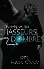 Chroniques des Chasseurs d'ombres - Tome 1 : Feu & Glace by FV_Estyer