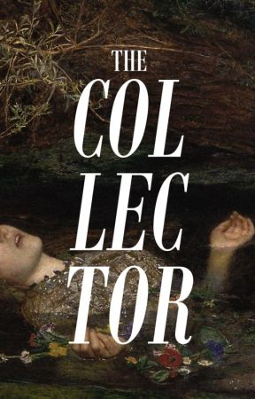 THE COLLECTOR by boysterous