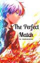 [A Shoto Todoroki Story] The Perfect Match by gemmamamma