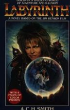 Labyrinth: A Novel by Scarylyn14