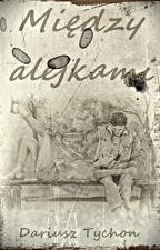 Między alejkami by Dariusz_Tychon