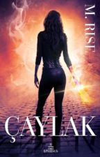 ÇAYLAK (AV serisi 2) by M_Rise