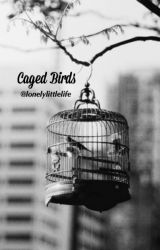Caged Birds by lonelylittlelife