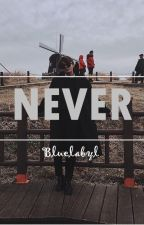 NEVER [ kth/bts FF] by bluelabyl