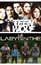 Préférences et imagines ~ THE MAZE RUNNER ~ TEEN WOLF by Miss_Newtie