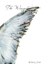 The Winged (Avengers x Reader x Supernatural) by Yeva_Stark