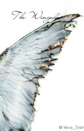 The Winged (Avengers x Reader x Supernatural) - Yeva - Wattpad