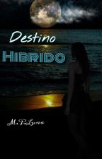 Destino Hibrido by AuthorMPL