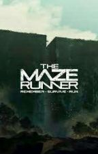 Maze Runner Imagines (and other Stuff) |German| by two_Maze_girls