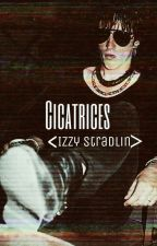 Cicatrices |Izzy Stradlin|  by MckaganMylove_