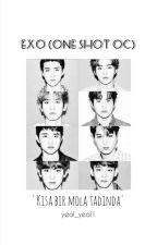 Exo One Shot 12 (OC) by yeol_yeol1