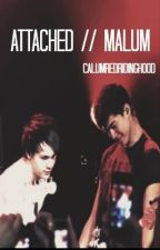 Attached | Malum by calumredridinghood