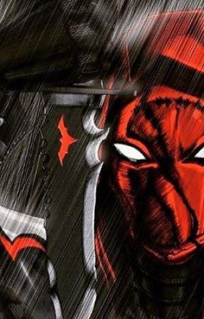 Red Hood/Anti-Hero Male Reader x Superhero Girls by TheDevilisaCretin