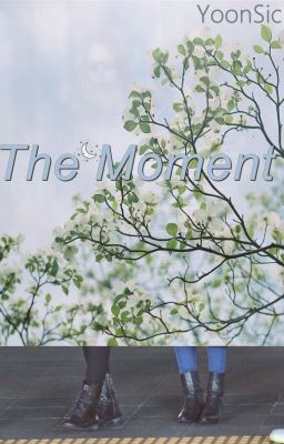 [LONGFIC]  The Moment - YoonSic