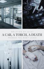 a car, a torch, a death | ⁿᵉᵛᶦˡˡᵉ ˡ by v-xviii