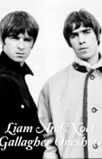 Liam and Noel Gallagher Oneshots (Requests Open)  by Lovefiction18