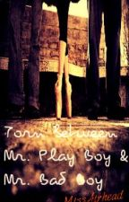 Torn between Mr. Play Boy and Mr. Bad Boy by MissAirhead