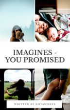 imagines - you promised by notmendes