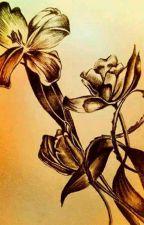Precious Heart Romance'S by JcelAnneMillan