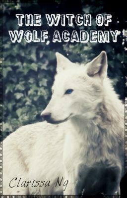 The Witch of Wolf Academy