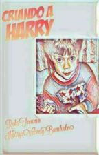 Criando a Harry [L.s] by R0ksT0mm0
