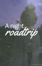 A night roadtrip by maladroitement