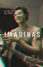 IMAGINAS (Shawn Mendes y tú) by FabricadaEnTaeyJin