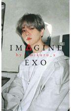 Imagine EXO by mikuru_x
