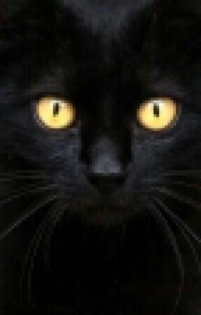 Nevermore by AveryxKenshin