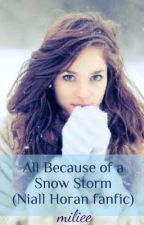 All Because of a Snow Storm (Niall Horan Fanfic) by miliee