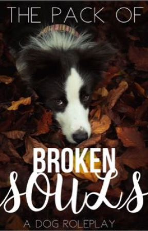 The Pack of Broken Souls | A Dog Roleplay by bailsoffrails