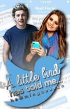 a little bird has told me✶coming soon by horansuniverse