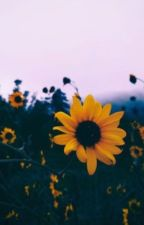 Series :// SoonHoon //: Juste parce que ç'est toi.  by nojamgold_