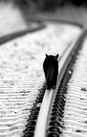 Lost My Way👣 by fefotoke