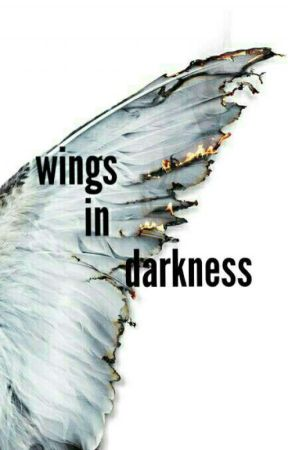 wings in darkness  by Mariam1224