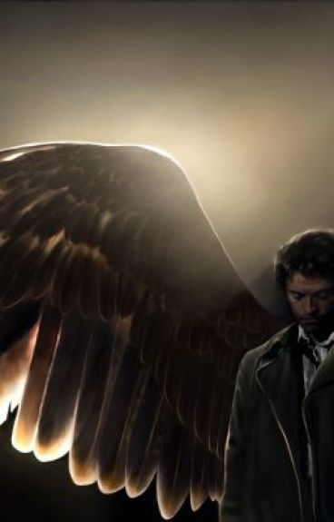 Castiel's Wings (A Destial one shot possibly short story)