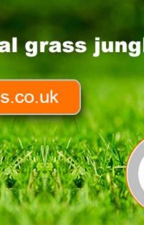 Artificial Grass for Play Area by SwanseaArtificial