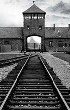 Das Mädchen aus Auschwitz by yizkerem_bubi
